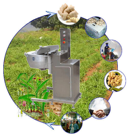 electric ginger slicer machine for sale