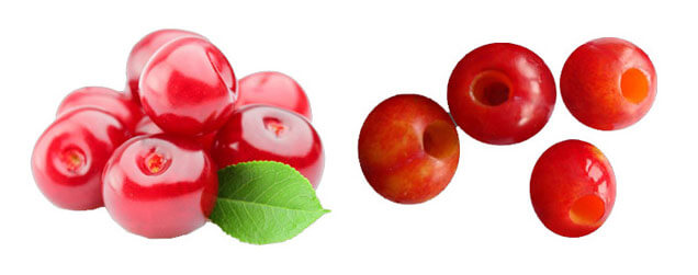 cherry and pitted cherry