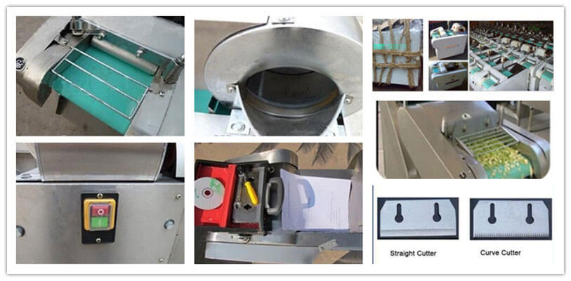 details of directional vegetable cutter machine