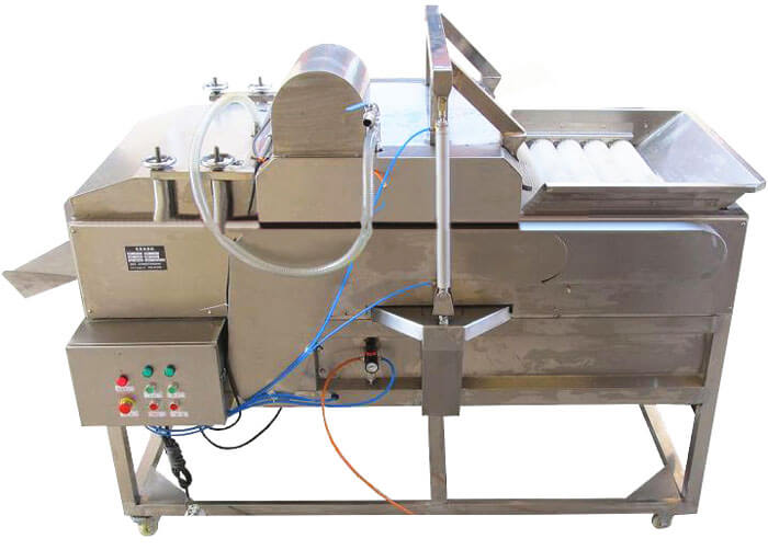 double fruit vegetable cleaning machine