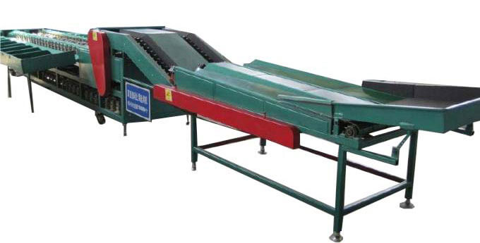 fruit grader sorting machine