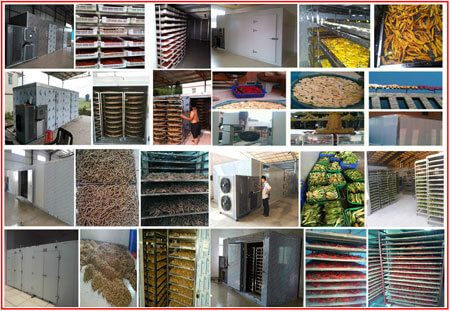 hot air vegetable drying machine