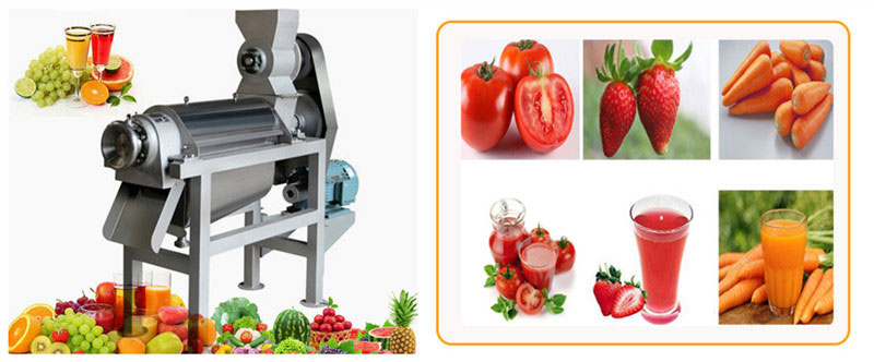 industrial cold press fruit juicer