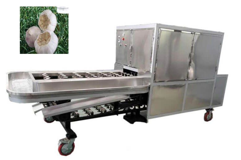 garlic root concave cutting machine