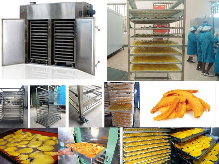 make dried mango products by hot air dryer machine