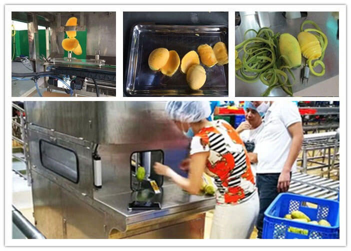 how to peel mango by fruit peeling machine