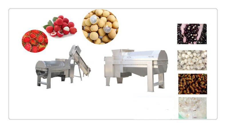 Olive pitting machine for pitting lychee, longan, waxberry, blueberry, etc.