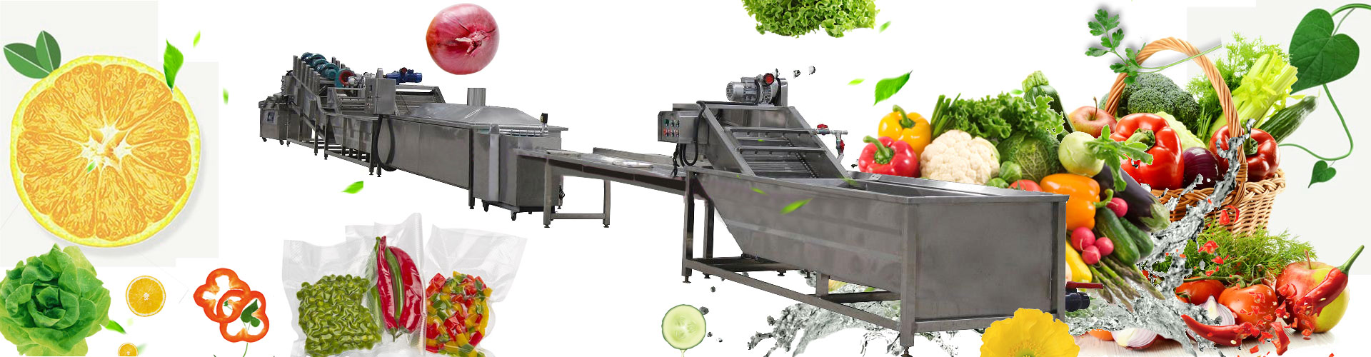 vegetable cleaning processing line