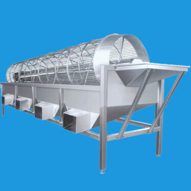 fruit vegetable grading machine