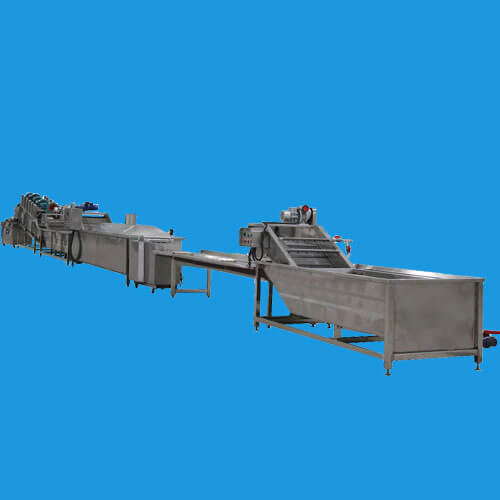 vegetable washing processing plant