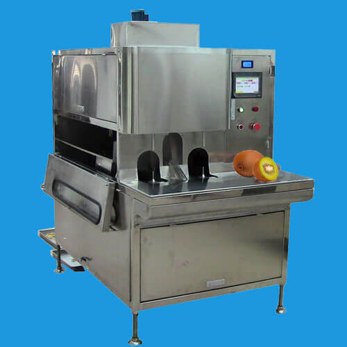 automatic fruit peeling machine