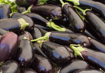 how to process eggplants